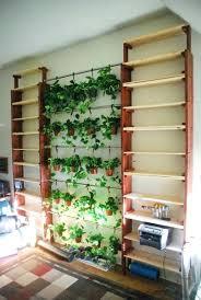 indoor kitchen garden ideas indoor wall herb garden exhort me