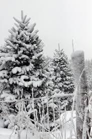 winter times calendar hcnc highcountrync