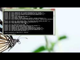 membuat database lewat cmd tutorial cara membuat dan meng import mysql database lewat command