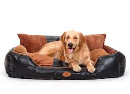 Oval Sofa Bed Amazoncom Rover Oval Chocolate Brown Leather Dog Sofa Bed Pet