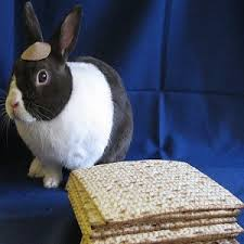 happy easter dear happy passover happy easter