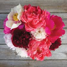 Peonies Flower Send Peony Bouquets Peonies Flower Delivery The Bouqs Co