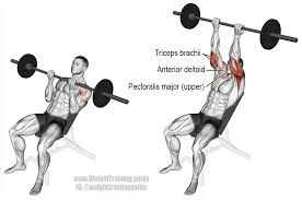 incline reverse grip barbell bench press a compound push exercise