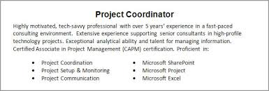 Sharepoint Resume Examples by How To Write Resume Summary Example Of Resume Summary Resume