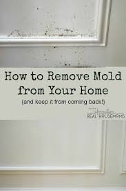 how to fix wood paneling remove mold from your home and keep it from coming back real