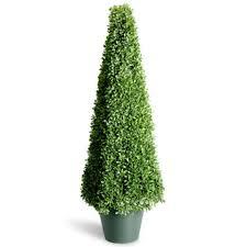 topiary trees trees topiary kmart