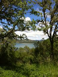 Discover The North Coast Visit California Lake Mendocino Ukiah Ca Favorite Places U0026 Spaces Pinterest
