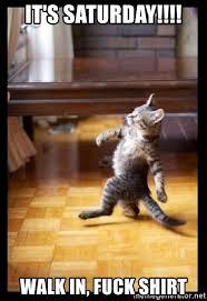 It S Saturday Meme - it s saturday walk in fuck shirt cat walking like aboss