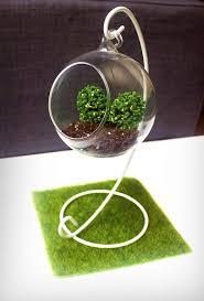 decoration modern open glass geometric succulent fern planter