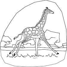 coloring pages for kids giraffe coloring pages for kids