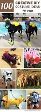 100 creative diy costume ideas for dogs diy costumes costumes