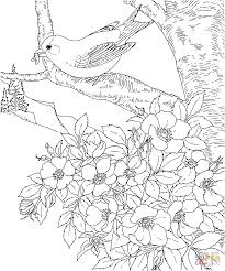 iowa map coloring page free printable coloring pages