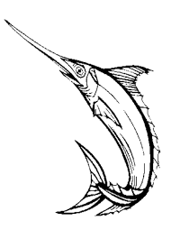 sword fish coloring u0026 coloring book