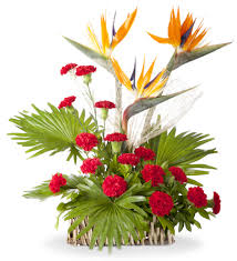 Flowes Online Flower Delivery In Pune Mumbai Shamuns Flowers