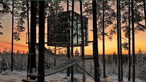 tree hotel sweden treehotel the perfect holiday hideaway swedish lapland