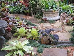 65 best tropical gardens images on pinterest tropical plants