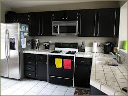 Painting Kitchen Cabinets Black Distressed by Kitchens With Black Distressed Cabinets Home Design Ideas