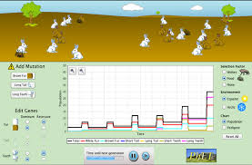 natural selection evolution genetics phet interactive