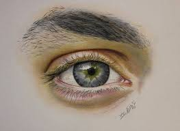25 trending eye pencil drawing ideas on pinterest eye study