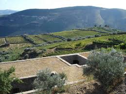 sustainable house in douro valley utopia arquitectura e