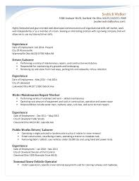 chronological resume copy