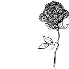 urldircom page 18 urldircom roses pic