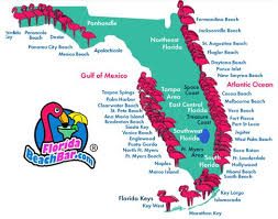 map of west coast of florida florida map of all beaches click on an area and a thorough