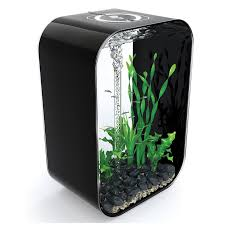 designer aquarium biorb portrait 60l black designer aquarium fish tank bowl kit
