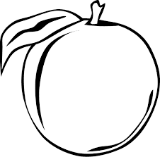 fruit outlines for coloring fruits and vegetables free coloring