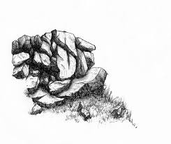 draw rocks google search how to draw realistic trees plants