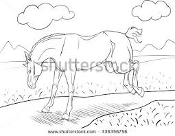 coloring book running horse shire stock vector 336708626