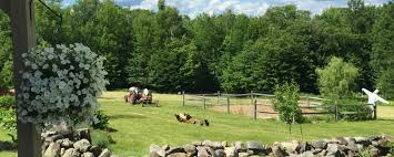 Barns For Sale In Ma Equestrian U0026 Country Properties For Sale Equine Homes Real
