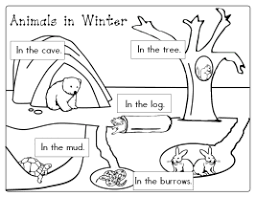 itsy bitsy learners animals in winter printables hibernation