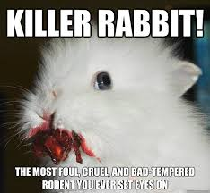 Rodent Meme - killer rabbit the most foul cruel and bad tempered rodent you