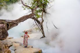 gallery the boiling river in the amazon