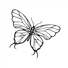 cool butterfly drawings cool butterfly designs to draw