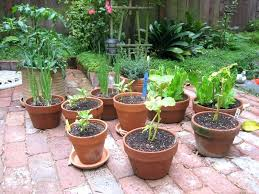 Container Vegetable Gardening Ideas Vegetable Garden Planters Ideas Container Vegetable Garden