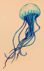 102 best sealife images on pinterest drawings jellyfish drawing