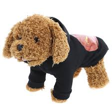 Ghost Dog Halloween Costumes by Online Buy Wholesale Pumpkin Costume Pattern From China Pumpkin