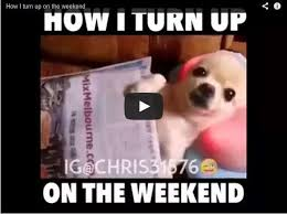 Funny Weekend Meme - video meme archives page 366 of 455 that s too funny