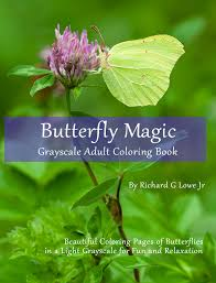 butterfly magic grayscale coloring book the writing king