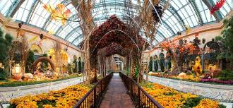 Botanical Gardens In Las Vegas Reviews Of Kid Friendly Attraction Bellagio Conservatory