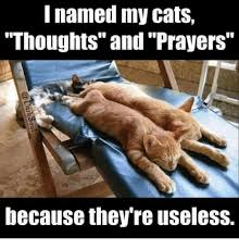 Prayer Meme - internet revolts against thoughts and prayers with meme frenzy
