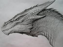 best 25 dragon drawings ideas on pinterest dragon art how to