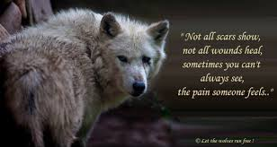 Lone Wolf Meme - beslissen quotes pinterest wolf successful life quotes and