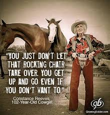 Cowgirl Memes - growing bolder growing bolder added a new photo with facebook