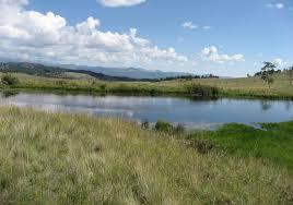 cobb creek ranch guffey colorado park county farms ranches