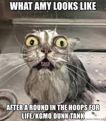 Wet Cat Meme - what amy looks like after a round in the hoops for life kgmo dunk
