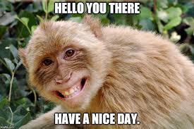 Have A Nice Day Meme - image tagged in hello have a nice day imgflip