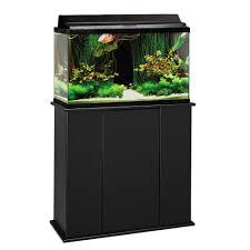 fish tanks saltwater u0026 freshwater aquariums u0026 supplies petco